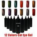 Sunrim Cat Eye Gel UV Esmalte de Uñas Venta Caliente Nuevo estilo 1 KG 12 colores de Gel UV Gel Polaco Para la Opción Imán Del Ojo de Gato de Uñas de Arte polaco