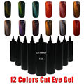 Sunrim Cat Eye UV Gel Nail Polish Hot Sale New style 1KG 12 Colors Gel Polish For Choice Magnet UV Gel Cat Eye Nail Art polish