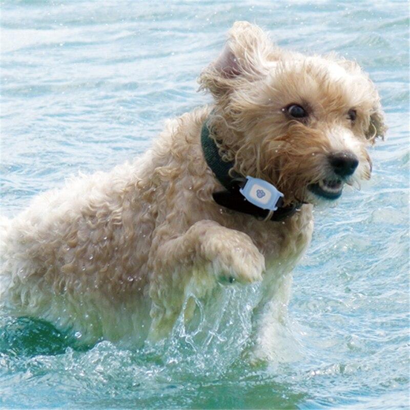 Dog GPS Tracker waterproof Mini Pet Tracking Device GPS dogs Locator Waterproof Time Free App Web Tracking