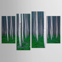 4 pieces / set of white birch forest landscape mural art home decoration living room canvas printing modern painting