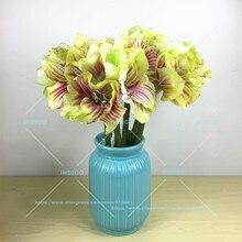 5 Stcke Grn Amaryllis Orchideen Wohnzimmer Neue Farbe Hochzeit Blume Grosse Knstliche Floral Ereignis Party Freies Versc