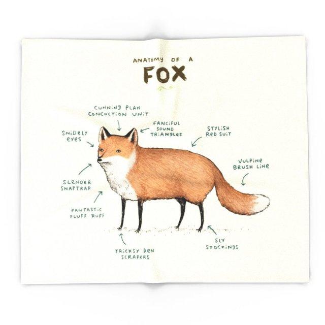 Blanket Custom Anatomy Of A Fox Fleece Blanket Sofabedplane Travel