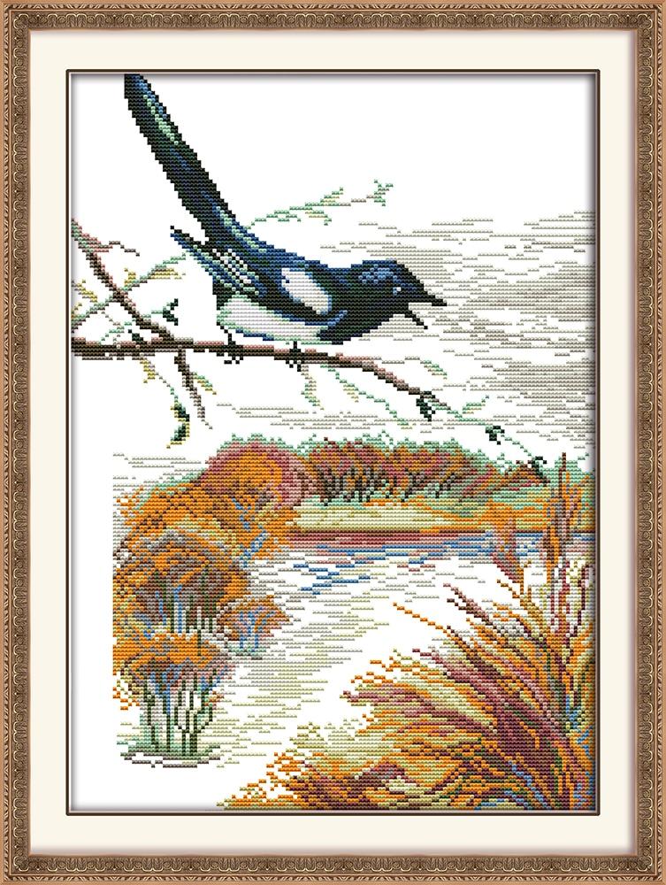 Bird on Branch Dmc Broderie Floss Wall Decoration Imprimate Cross - Arte, meșteșuguri și cusut