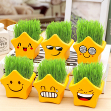 4 Styles Mini DIY Bonsai Originality Funny Mini Flowerpot Office Bonsai Accessories Christmas Gift Flower Seed Plants Potted