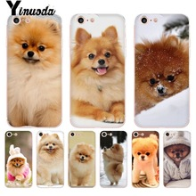 Phone-Case Pomeranian 11promax Cute Yinuoda for 8 7/6/6s/.. Dogs Colorful