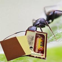 DISAAR 100% Wild Fire ant venom Essential Oil Far infrared Analgesic Patch for Cure Rheumatism Arthritis Pain Killer Plaster