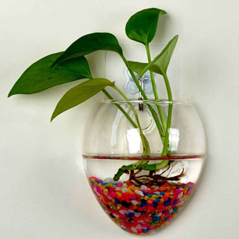 Detail Feedback Questions About Wall Glass Terrarium Water Plants