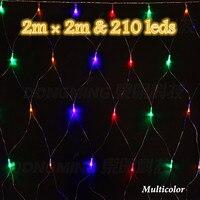 2 2m RGB Led String Light Mesh 220V Outdoor Garden Festival Holiday Xmas Christmas Wedding Decoration