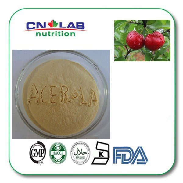 free shipping 1000g/ bag natural acerola cherry extract powder 17% Vitamin C for sale