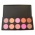 Professional 10 cores profissional maquiagem Face Powder Blush cosméticos pó Blush Palette frete grátis