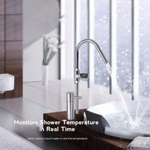LED Digital Shower Thermometer