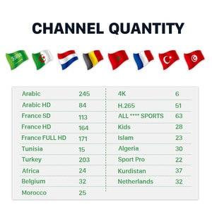 Image 2 - Арабский/Франция IP ТВ коробка бесплатно 1 месяц французский IP ТВ подписка Hk1 плюс Android 8,1 ТВ бокс турецкий, Бельгия, Morocco Algeria IP tv