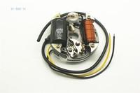 2 KIND PUCH Stator COIL 6V 17W 35W Zundapp Kreidler Hercules KTM Ignition Alternator PUCH stator coil 17 w 35 W