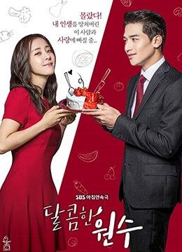 《甜蜜的冤家》2017年韩国剧情,爱情电视剧在线观看