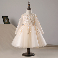 Floral Tulle Party Dress for Baby Girl Dress Wedding Easter Baby Dress Long Sleeve 1 Years Birthday Infant Fancy Baptism Frocks