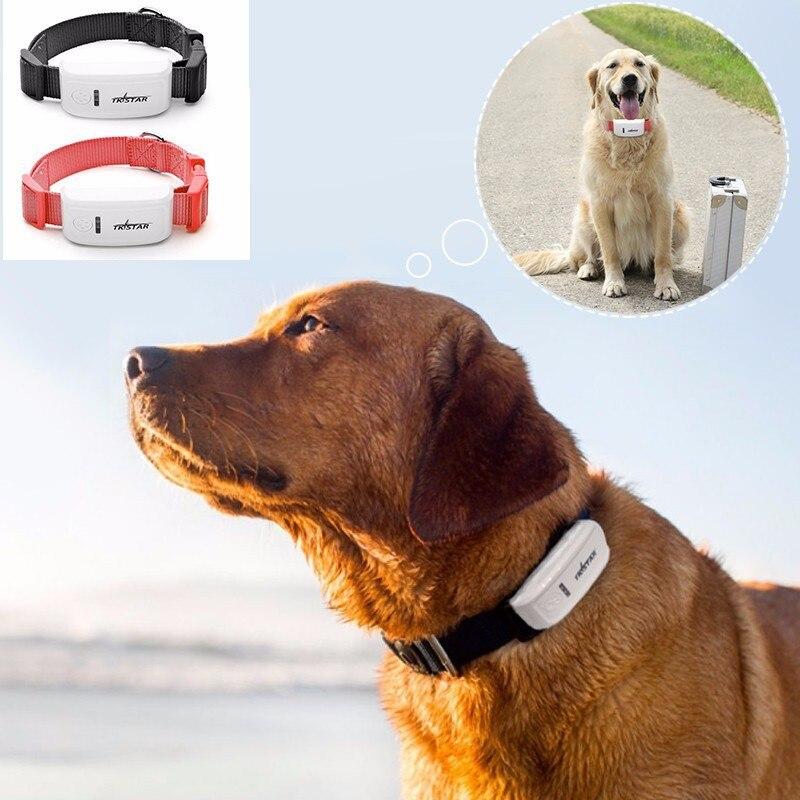 Tkstar TK909 Mini traqueur pour animaux de compagnie collier gps pour chats chien gps localisateur gsm gprs tracker moniteur suivi gratuit APP suivi Web gratuit