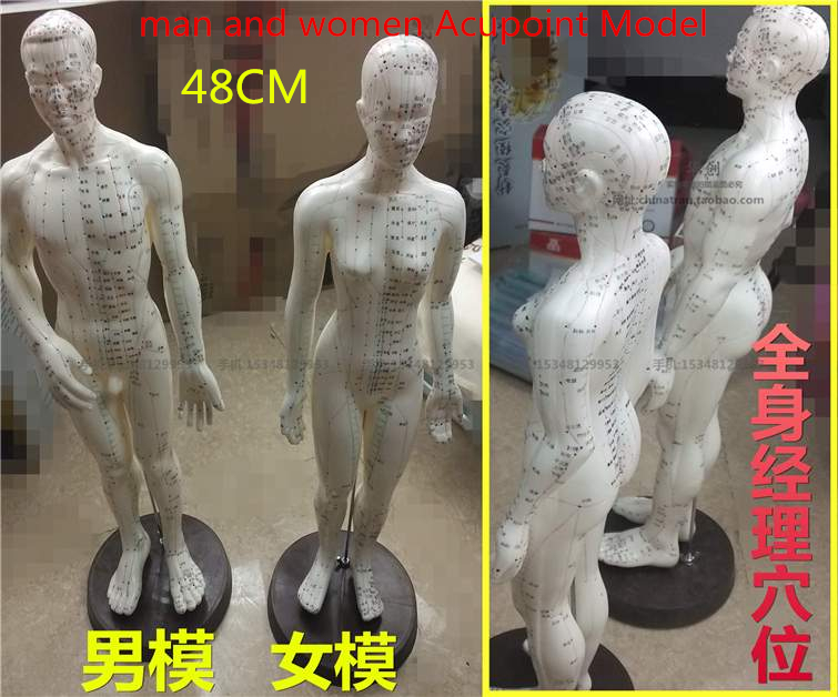 48CM chinese human acupuncture meridian points model male or female acupoint model with user manual man momen Acupoint Model комплект из 3 пар носков