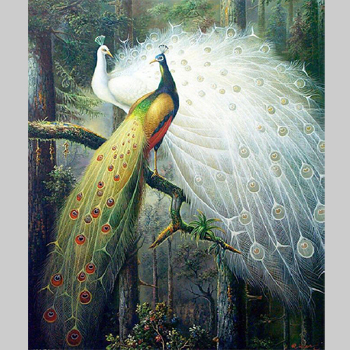 Modern Abstract Oil Canvas Painting Peacock Pictures Home Decoration Wall Art Print Paintings Picture For Living Room No Frame