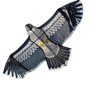 Free Shipping Outdoor Sports High Quality 2 4m Power Eagle Kite With Handle And Line Easy