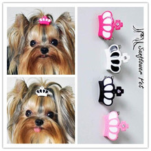 Beautiful resin crown dog hair clips / 2 pieces