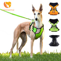 DOGGYZSTYLE Reflecterende Nylon Grote Harnas 3 Kleuren Sterke Pet Training Vest Big Hondenriem Halsbanden Set Soft Walk Out harnas