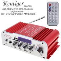 Kentiger 2CH HI FI Bluetooth Car Audio Power Amplifier FM Radio Player Support SD USB DVD