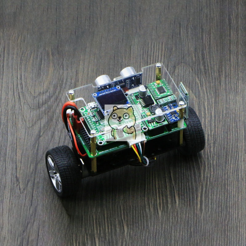 DC Motor Balance Trolley, STM32 Two-wheel Balance Trolley, Finished Product, With Information