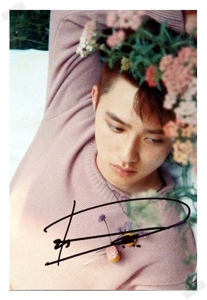 signed EXO DO D.O  Doh Kyungsoo autographed original photo  6 inches free shipping 08201705 play doh игровой набор магазинчик домашних питомцев