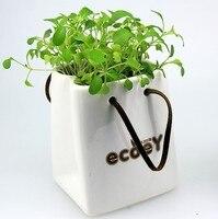New Ceramic Chậu Hoa Mô Hình Vụ Nổ Hàng Tạp Hóa Nhật Bản Gốm Mini Planter Lọ Hoa Lưu Trữ Để Bàn Chậu