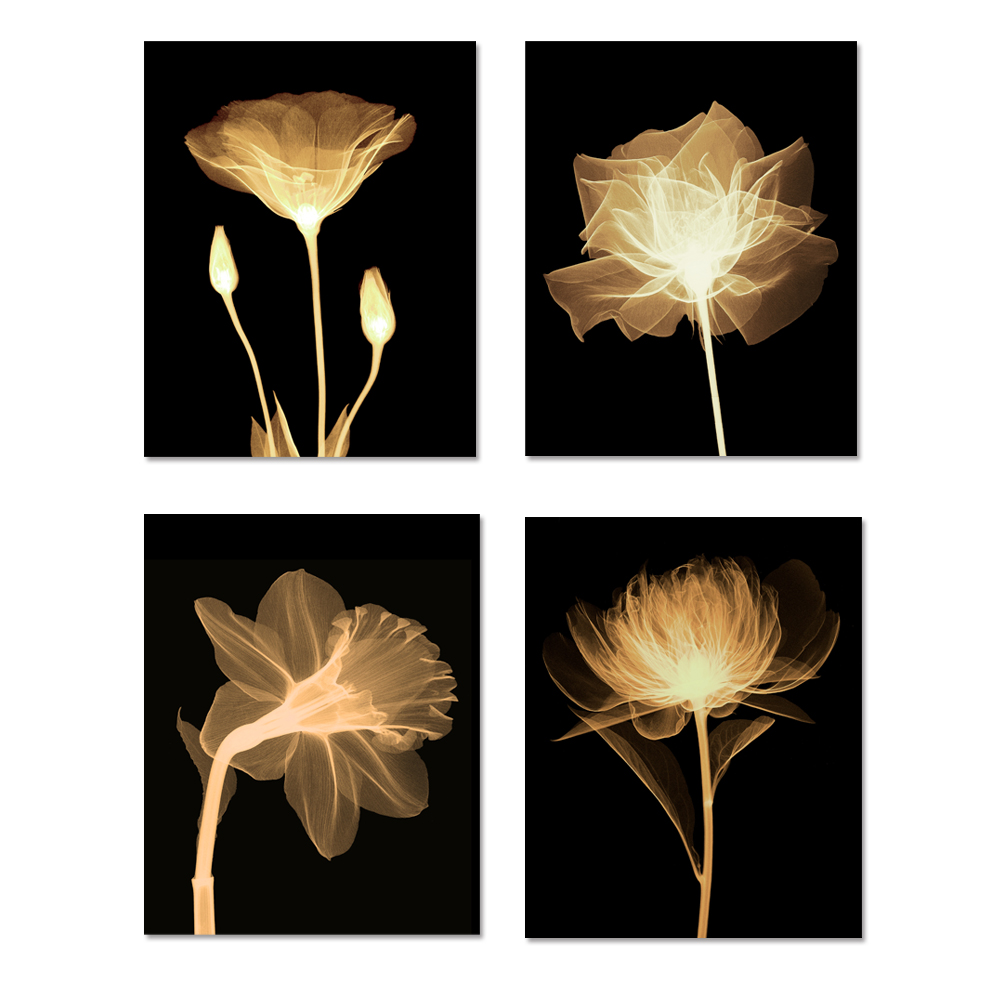 FRETE GRÁTIS Fluorescência Flor Pinturas Cópias Da Lona 4 Painel de Arte Moderna Casa Decoração Da Parede de Suspensão Para Sala de estar Sem Moldura