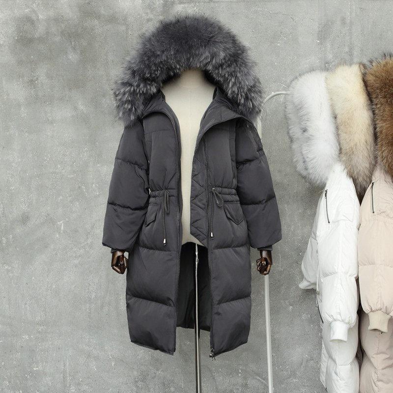 Raccoon discount Coats Down 15