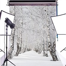 winter Snow birch tree woodland forest sun photo backdrop Vinyl cloth High quality Computer print wall Background