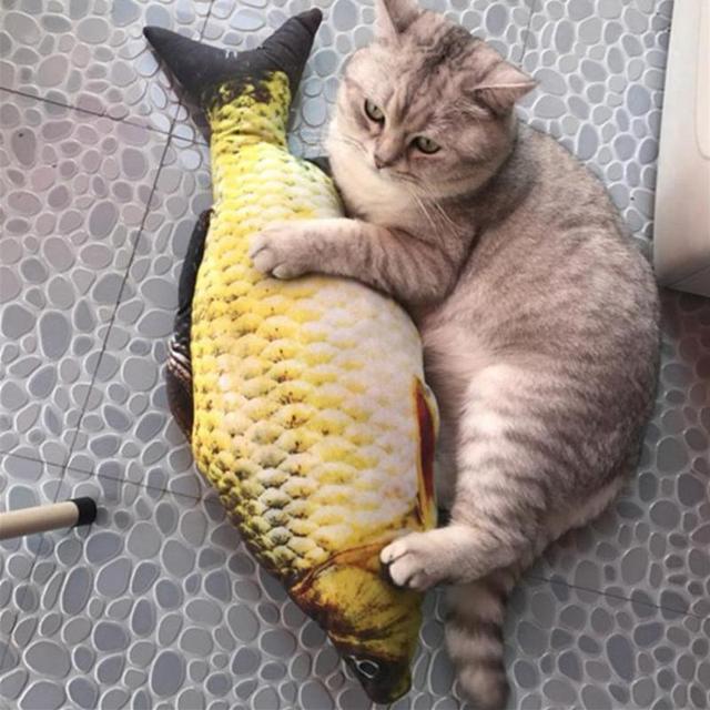 Cm  Cm Kucing Mendukung Ikan Mainan Boneka Ikan Lucu Katun