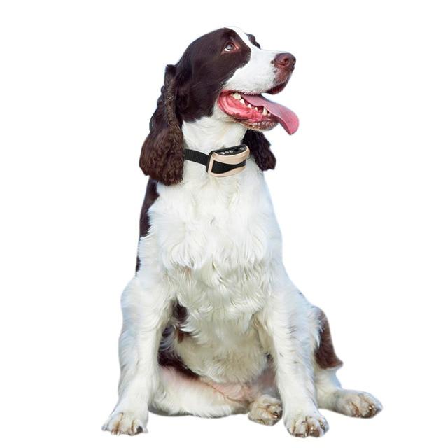 anti bark anti barking collar vibration electric shock sound Automatic collar for pet dogs IP7 waterproof dog training collars 3