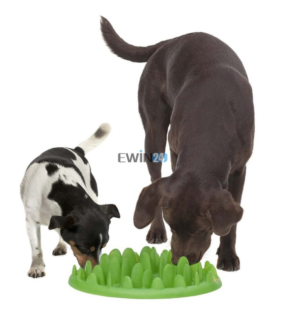 1  x  Home Dog Food Bowl Large Green Interactive Slow Feeder for Dogs – No Gulp Slow Feeder