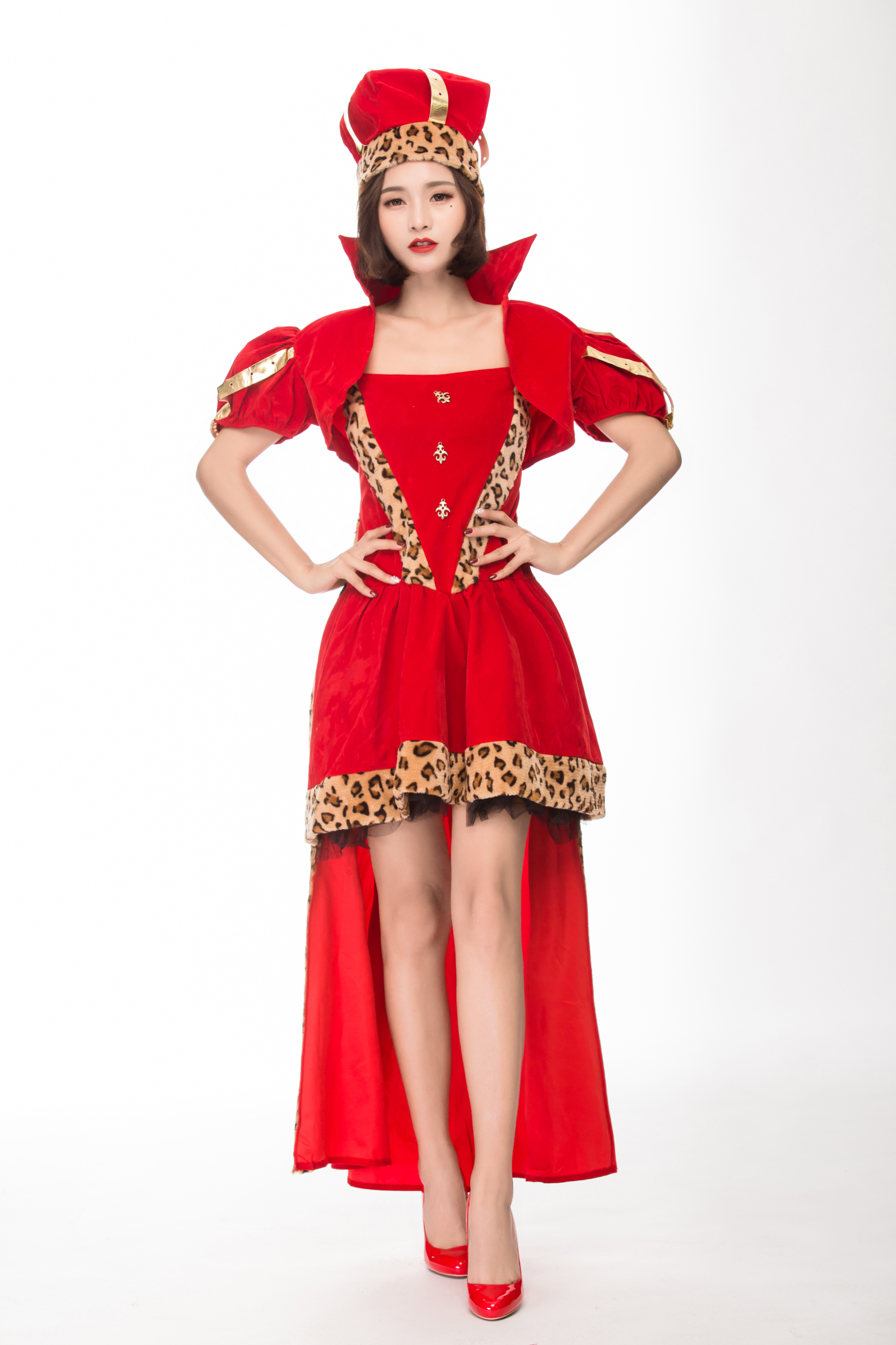 Adult womens christmas costume