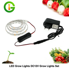 LED Grow Lights DC12V Growing LED Strip Plant Growth Light Set with Adapter and Switch Free S