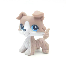 rare Animal font b pet b font shop lps toys collie 67 littlest grey white dog
