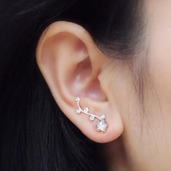 Absolut forbløffende AAA Cubic Zirconia sølv ørejakke Kvinder - Smykker - Foto 2