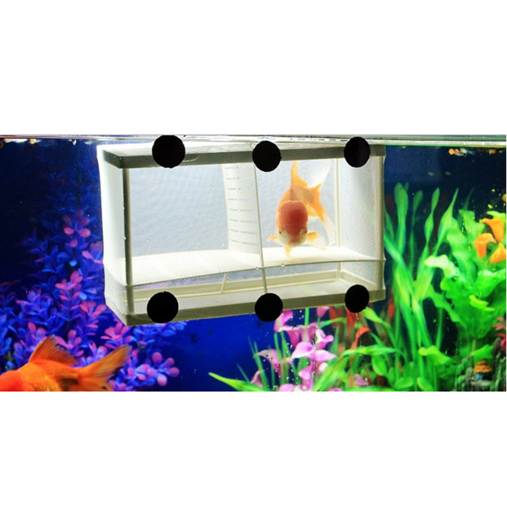 Fish tank supplies - Aquarium Fish Breeding Box Net Tank Hatchery Fry Trap Float Breeder Isolation Newborn Baby Nursery Incubator