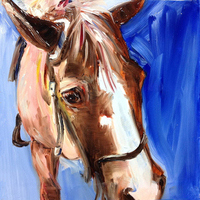 Hand painted High Quality Abstract Horse Head Painting On Canvas Funny Donkey Oil Painting For Living Room Decorative