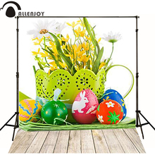 10feet*20feet(300cm*600cm) Wood photography backdrops photography background backdrop Faceplate Egg