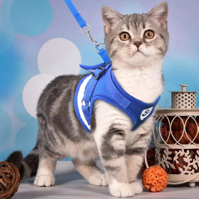 Maglia Cat Harness e Guinzaglio Set Riflettente Dog Puppy Harness Nylon Gatti Ga