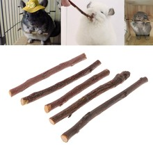 2019 New 5 pcs Chew Stick Apple Tree Branch Hamster Squirrel Natural Toys Parrots Rabbits(China)