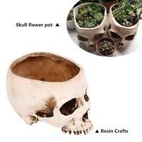 Fancy Home Animal Big Skull Model Multifunctional Flower Bonsai Plant Pot Fruit Plate Storage Tank Large