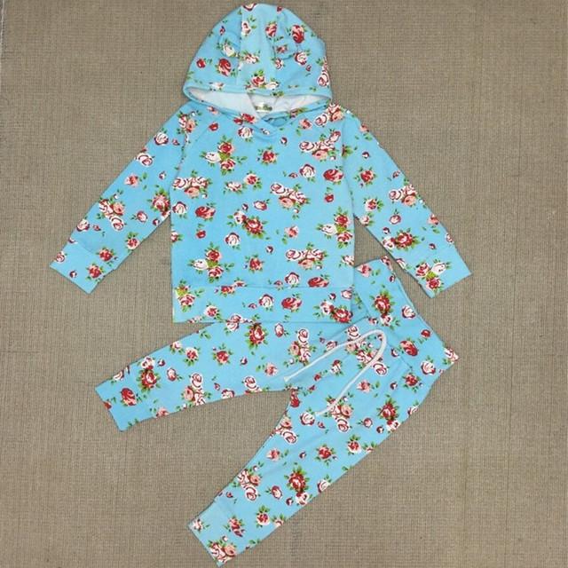 Meninas do bebê Floral Conjuntos de Roupas de Inverno Da Menina Outono 2 Pcs Terno Hoodies + calças da Menina Camisola de Algodão Set 2016 nova Moda 15D
