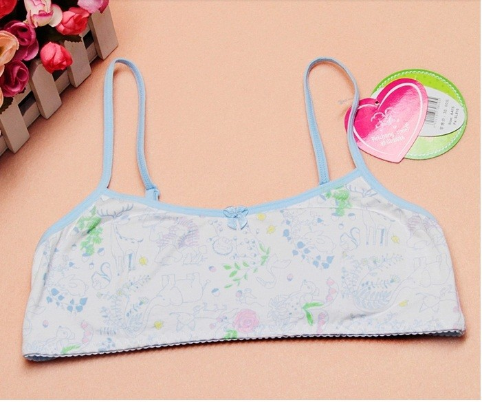 274588e258 Free shipping 2015 Fashion Sister cotton training bras for 9 to 12 year old  pubescent young girls SL810 P-in Bras from Mother   Kids on Aliexpress.com  ...