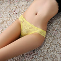 Women's Sexy Panties Butterfly Lace Briefs Knickers Lingerie Underwear