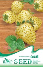 (Mix minimum order $5) 1 original pack 20 pcs White Strawberry Seeds fruit seeds free shipping B056