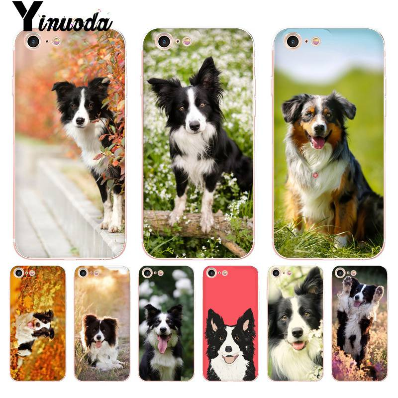 Yinuoda Cute Border Collie Dog Novelty Fundas Phone Case Cover For Apple Iphone 8 7 6 6s Plus X Xs Max 5 5s Se Xr Cover Cellphones & Telecommunications